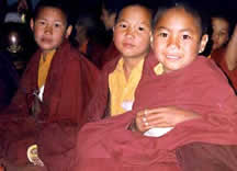 Tenzin Phuntrok and his friends